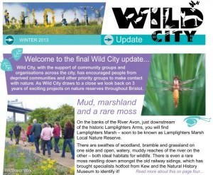 Wild City Newsletter 14